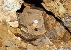 Откриха съкровище и древен живот до Резиденция Бояна