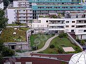 Озеленени покриви-градини
