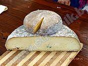 Зеленото сирене на Черни Вит